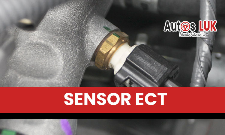 Sensor ECT Automotriz